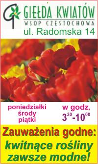 Giełda Kwiatów Częstochowa WSOP